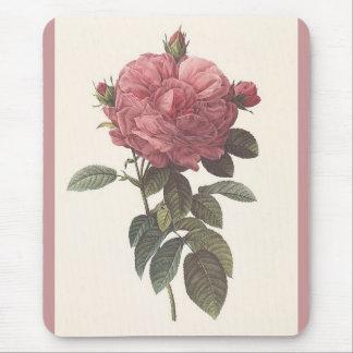 PR Redoute - Rosa gallica flore giganteo Rose Mouse Pad