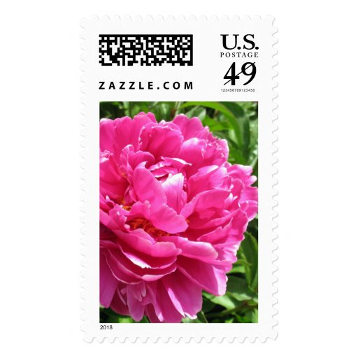 Practically Perfect Peony Postage Stamps
