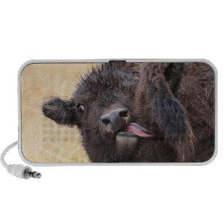 practice good hygiene iPod speaker