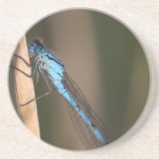 Práctico de costa azul de la libélula posavaso para bebida