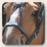 Práctico de costa belga del caballo posavaso