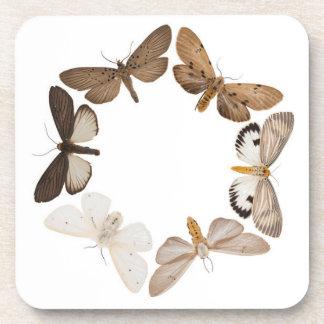 Práctico de costa con el anillo de la mariposa posavasos de bebida