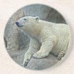 Práctico de costa de Cub del oso polar Posavasos Manualidades