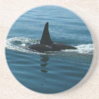 Práctico de costa de la aleta de la ballena de la  posavasos manualidades