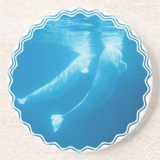 Práctico de costa de la ballena de la beluga posavaso para bebida