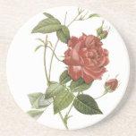 Práctico de costa de la bebida del rosa rojo del v posavasos diseño
