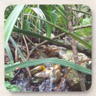 Práctico de costa de la cala de la selva tropical posavasos de bebida