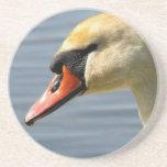 Práctico de costa de la cara del cisne posavasos personalizados
