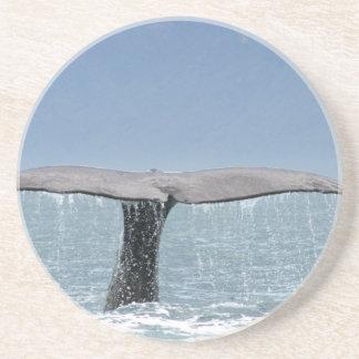 Práctico de costa de la cola de la ballena posavaso para bebida