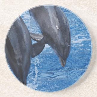 Práctico de costa de la demostración del delfín posavasos para bebidas