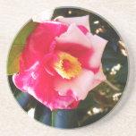 Práctico de costa de la flor rosada y blanca posavasos diseño