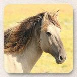 Práctico de costa de la fotografía del caballo posavasos de bebidas