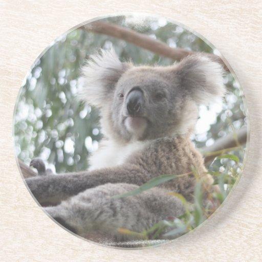 Práctico de costa de la koala posavasos manualidades