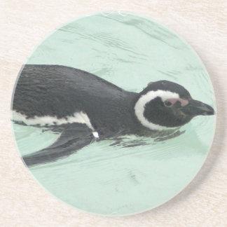 Práctico de costa de la natación del pingüino posavasos diseño