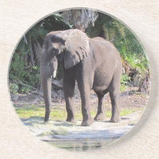 Práctico de costa de la piedra arenisca del elefan posavasos de arenisca