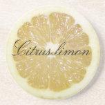 Práctico de costa de la rebanada del limón de Citr Posavasos Diseño