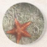 Práctico de costa de las estrellas de mar posavasos diseño