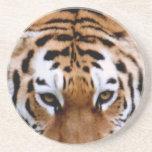 Práctico de costa de las marcas del tigre posavasos cerveza