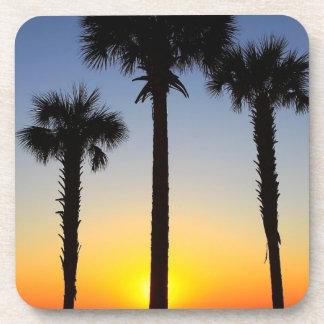 Práctico de costa de las palmeras de la playa posavasos