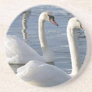 Práctico de costa de las reflexiones del cisne posavaso para bebida