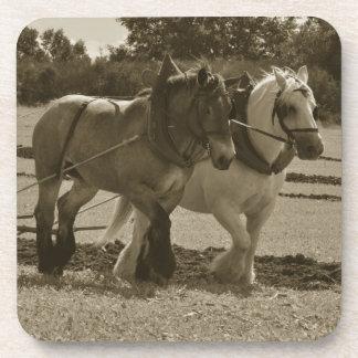 Práctico de costa de los caballos posavasos de bebidas