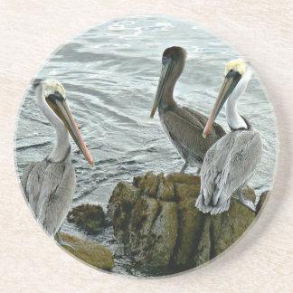 Práctico de costa de los pelícanos de Monterey Posavasos Personalizados