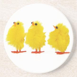 Práctico de costa de los polluelos del bebé de Pas Posavasos De Arenisca