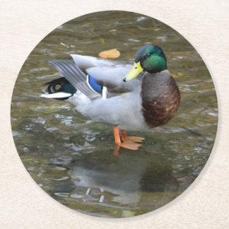Práctico de costa de papel del pato del pato posavasos personalizable redondo