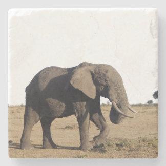 Práctico de costa de piedra del elefante posavasos de piedra