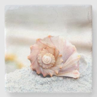 Práctico de costa de piedra del Seashell Posavasos De Piedra