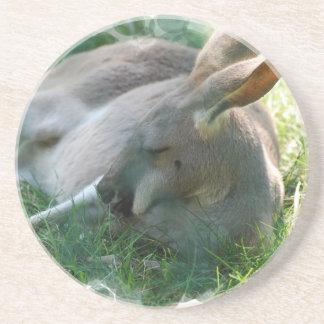 Práctico de costa de relajación del canguro posavasos cerveza