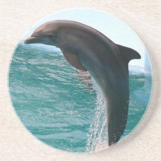 Práctico de costa de salto del delfín posavasos diseño
