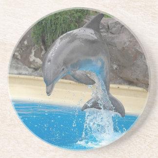 Práctico de costa de salto del delfín posavasos cerveza