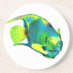 Práctico de costa del Angelfish de la reina Posavasos Para Bebidas