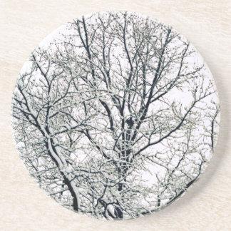 Práctico de costa del árbol del invierno posavasos manualidades