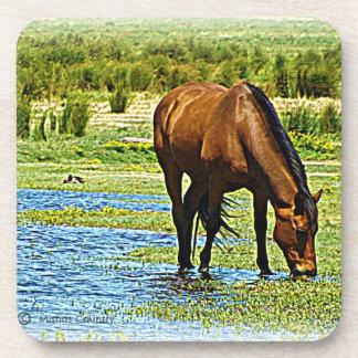 Práctico de costa del caballo posavasos de bebidas