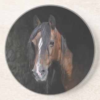 práctico de costa del caballo posavasos diseño