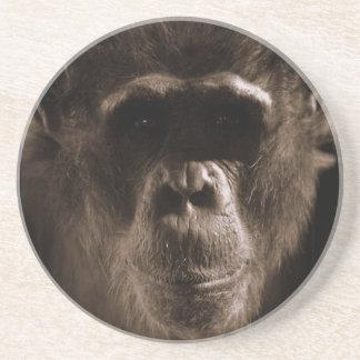 Práctico de costa del chimpancé posavasos cerveza