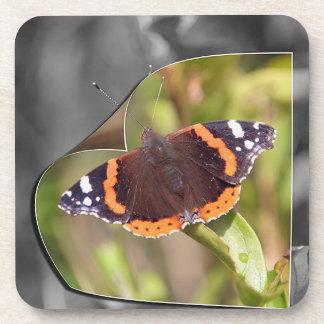 Práctico de costa del corcho de la mariposa posavaso