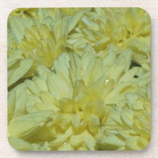 Práctico de costa del corcho de las flores de las  posavasos