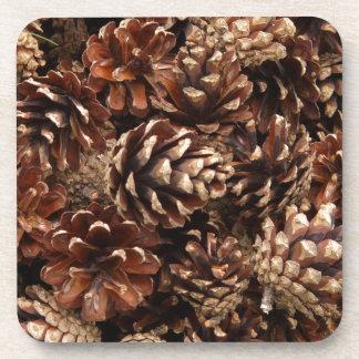 Práctico de costa del corcho de los conos del pino posavaso