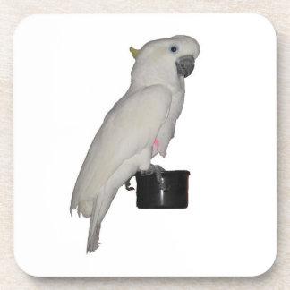 Práctico de costa del corcho del Cockatoo Posavasos