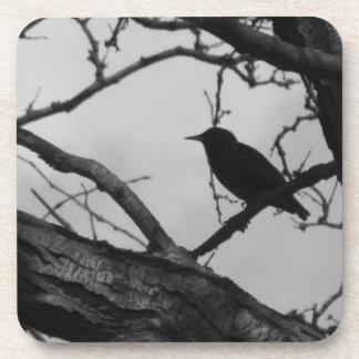 Práctico de costa del corcho del cuervo posavasos