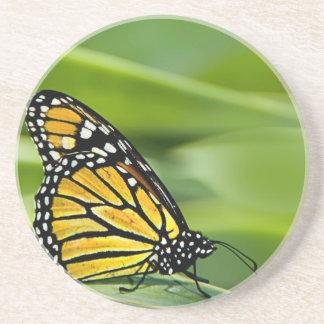 Práctico de costa del diseño de la mariposa de mon posavasos personalizados