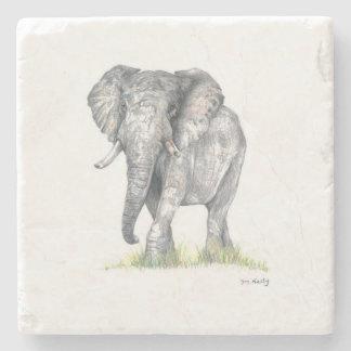 Práctico de costa del elefante posavasos de piedra