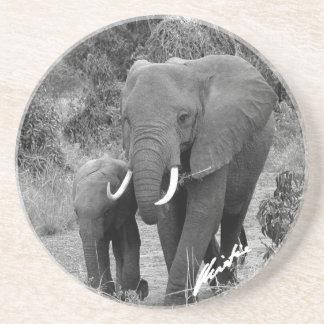Práctico de costa del elefante y del becerro posavaso para bebida