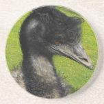 Práctico de costa del Emu Posavasos Cerveza
