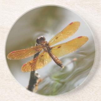 Práctico de costa del este de la libélula de Amber Posavasos Personalizados