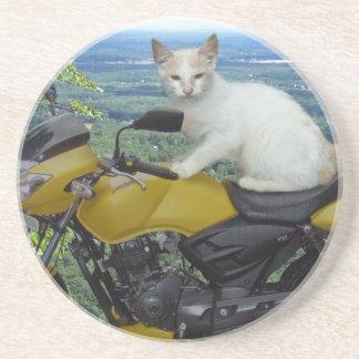 Práctico de costa del gato del motorista posavasos diseño