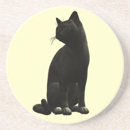 Práctico de costa del gato negro que se sienta posavasos cerveza